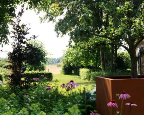 zicht vanuit de tuin naar de omgeving