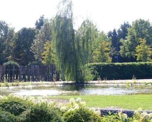 Park achtige tuin Haps
