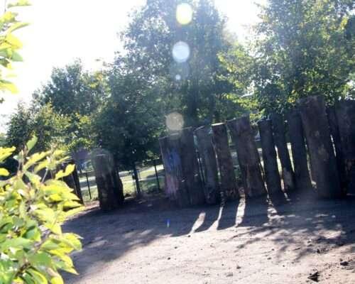 stammen-in-tuinontwerp-Haps