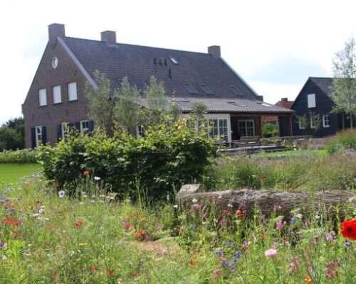 Bloemenmengsel in de tuin